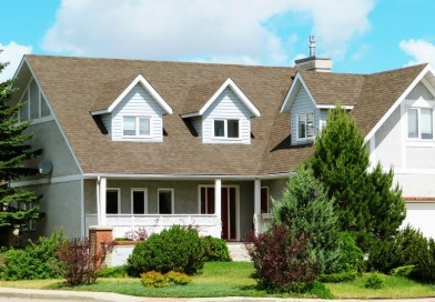 Types of Landscaping Options You Can Choose From