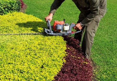 7 Reasons to Hire Professional Landscapers