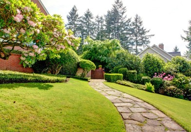 Top 7 Benefits of Landscaping That You Should Know