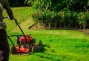 How To Find the Best Lawn Mower Shop Who You Can Trust?